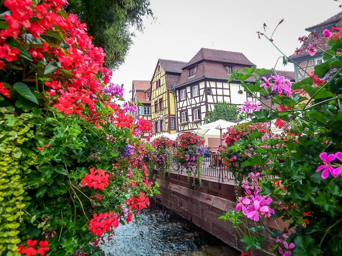 Flowers and canal in the Little Venice area of Colmar