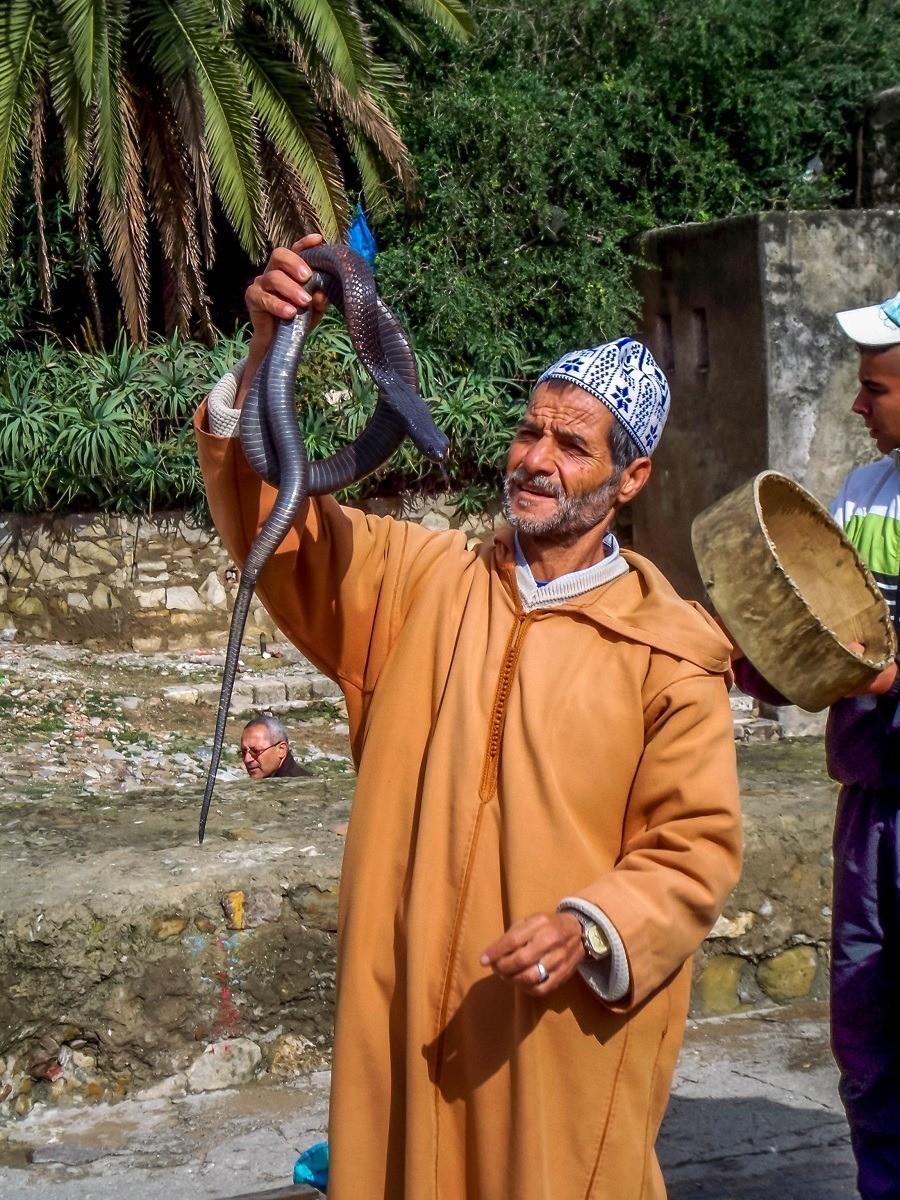 Snake charmer in Tangier