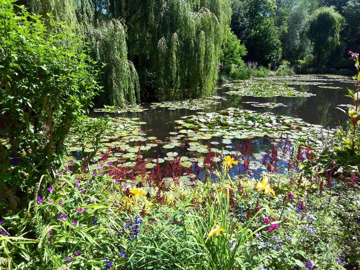 Pond in Monet's Water Garden in Giverny, France