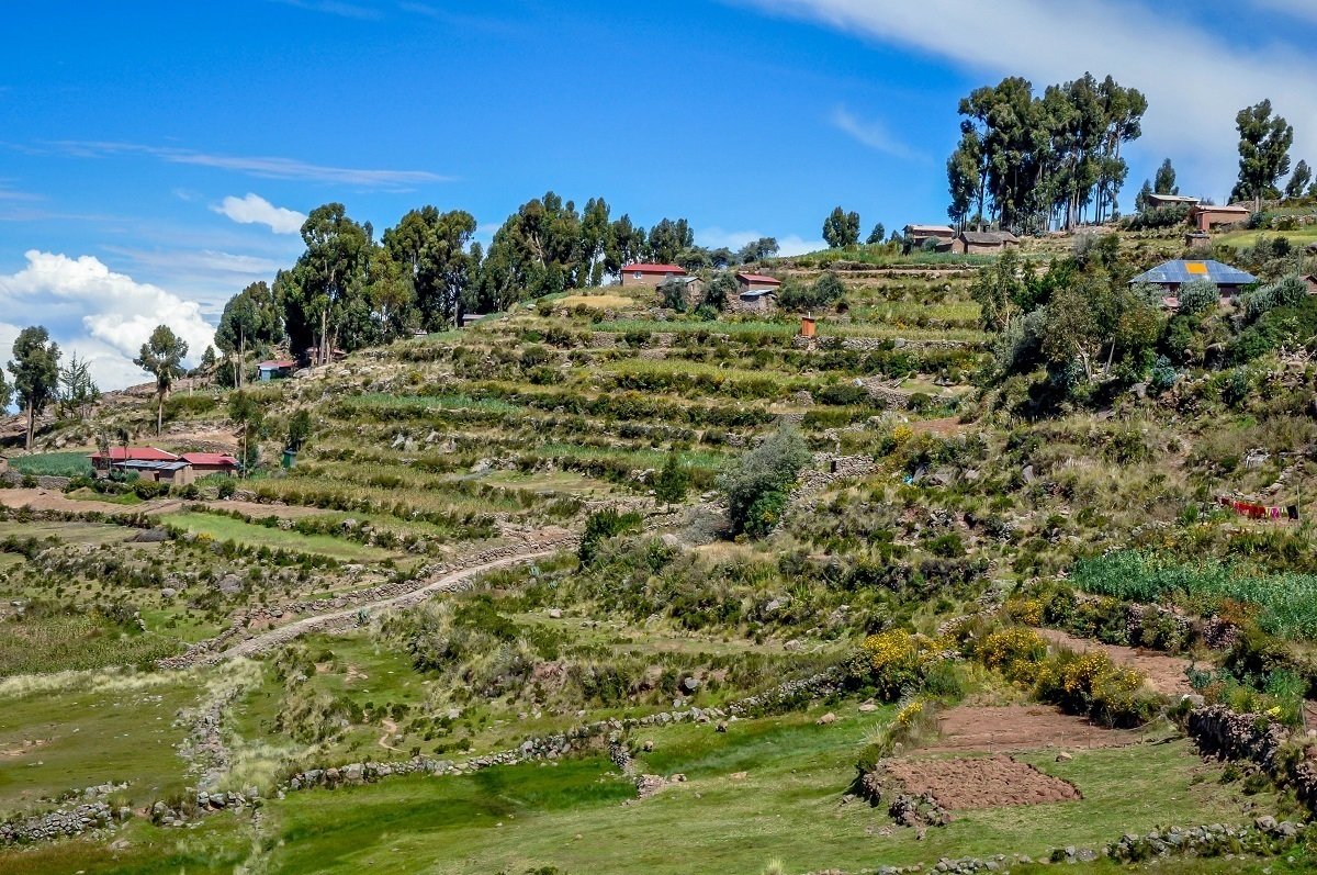 Agricultural terraces on Taquile Island in Lake Titicaca