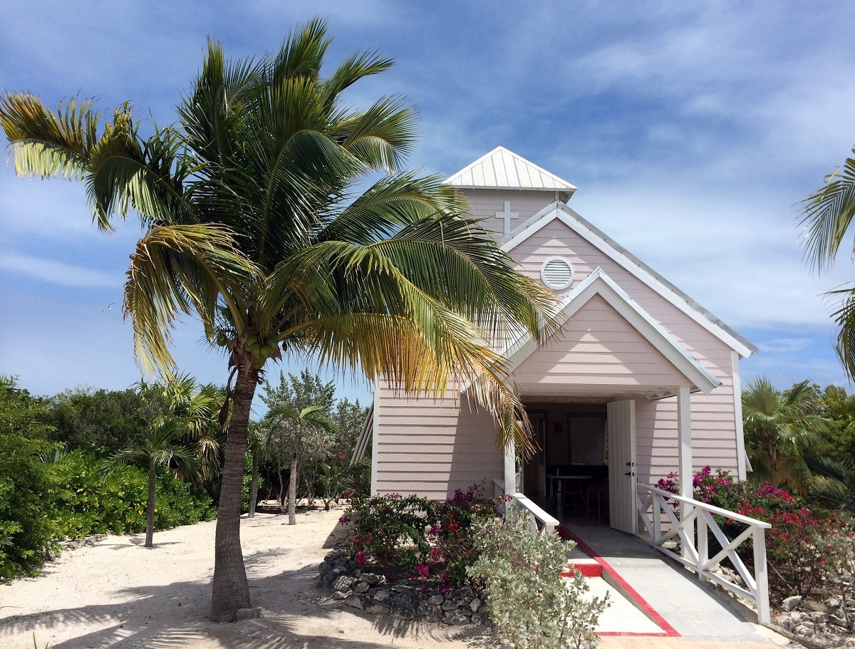 Pink church and palm tree