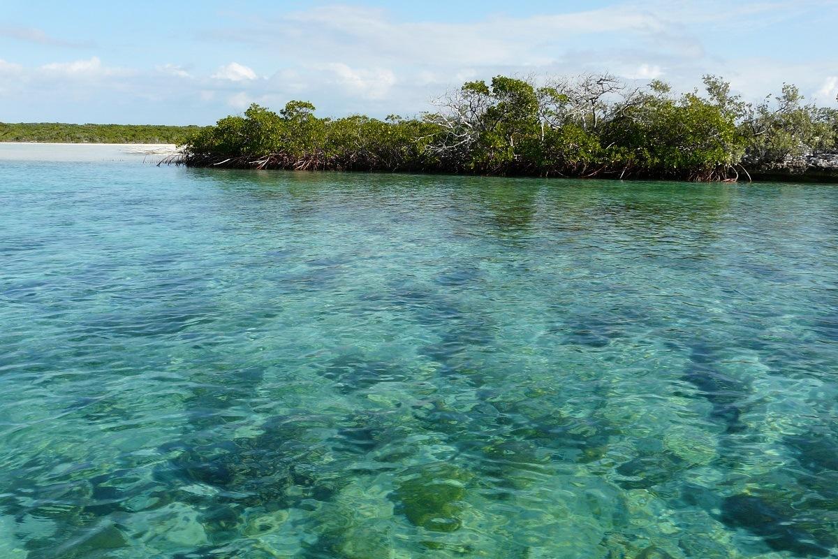 The bonefish lagoon