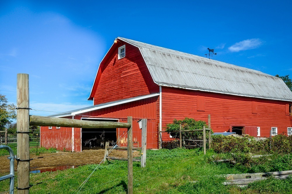 The bright red barn at the Beekman Farm Sharon Springs NY