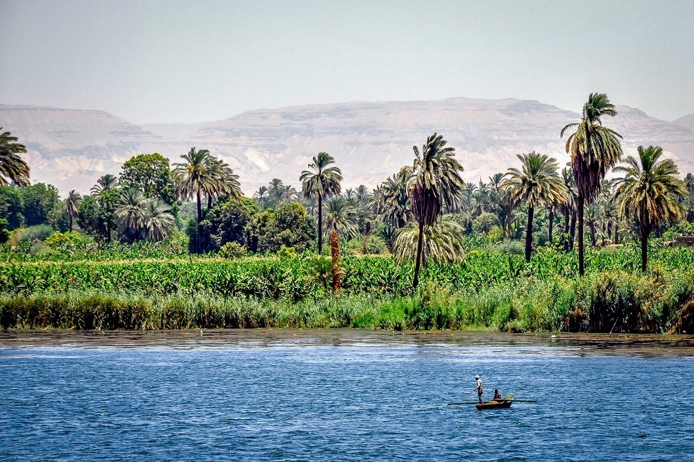 Fishermen on the Nile River with palm trees