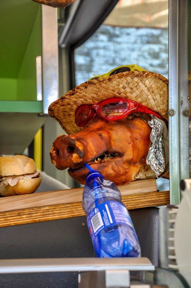 Roasted pig head wearing a hat and glasses