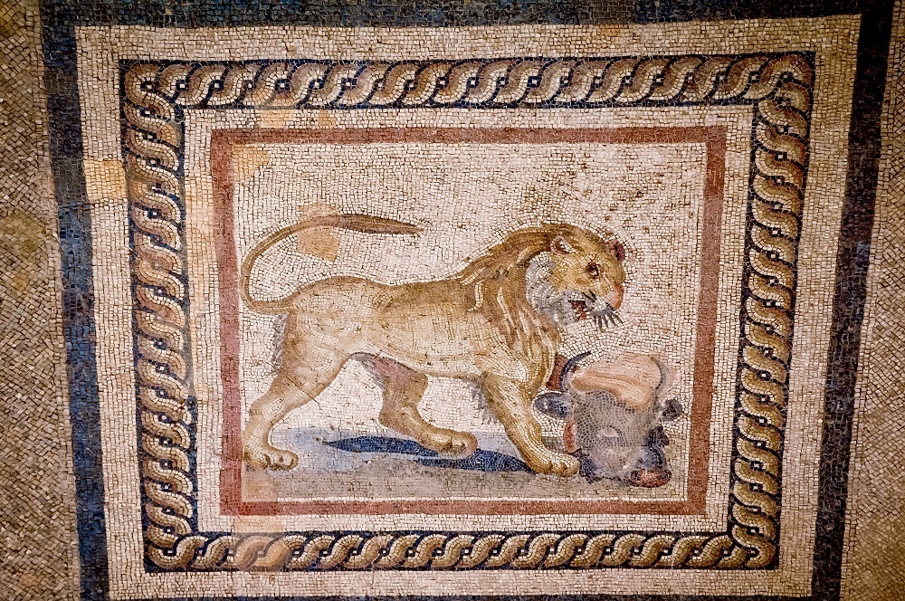 Restored lion mosaic
