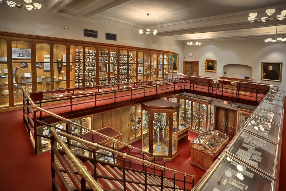 Central gallery of oddities at the Mutter Medical Museum