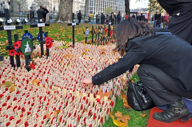 Woman with poppies on the lawn at Westminster Abbey
