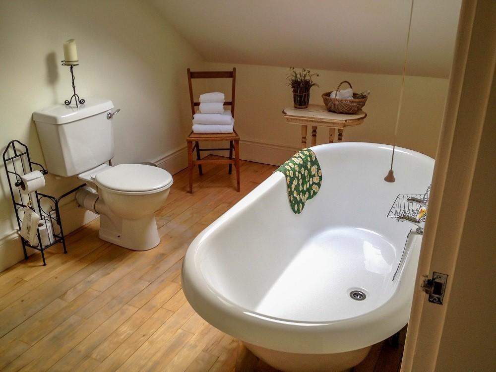 Bathroom with toilet and bathtubs