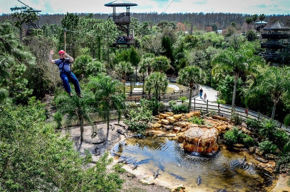 Person ziplining over an alligator pond