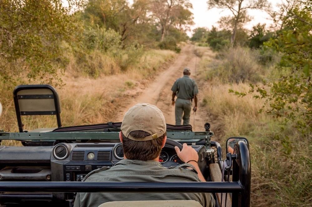 Animal tracking on a safari game drive