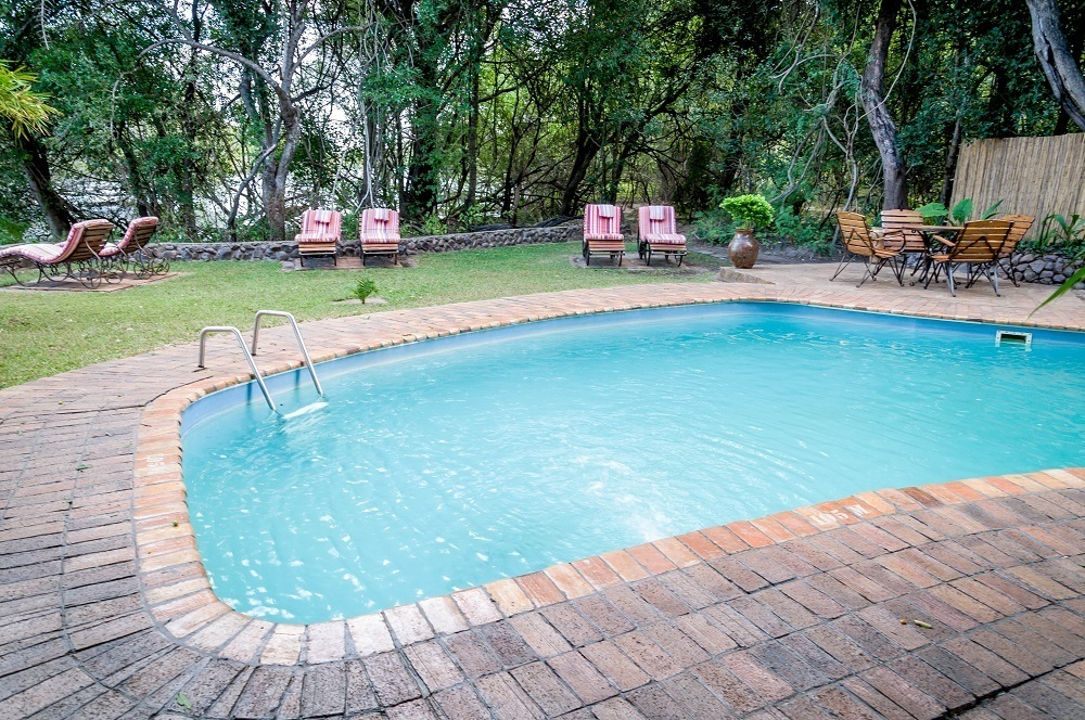 The swimming pool and loungers