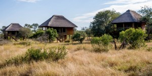 The chalet's at nThambo Tree Camp.