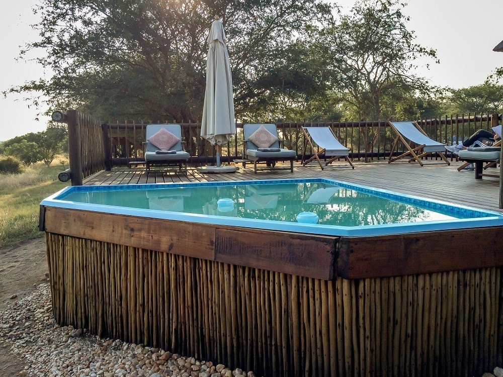 The pool at nThambo and sun loungers