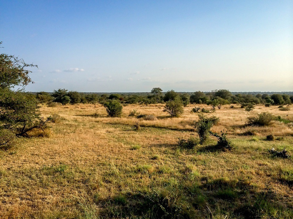 The view of the Klaserie Nature Reserve from our chalet