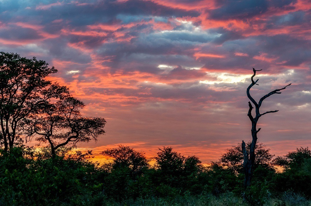 A colorful sunset in South Africa