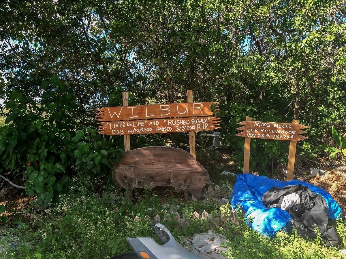 Animal cemetery on Cockleshell Beach