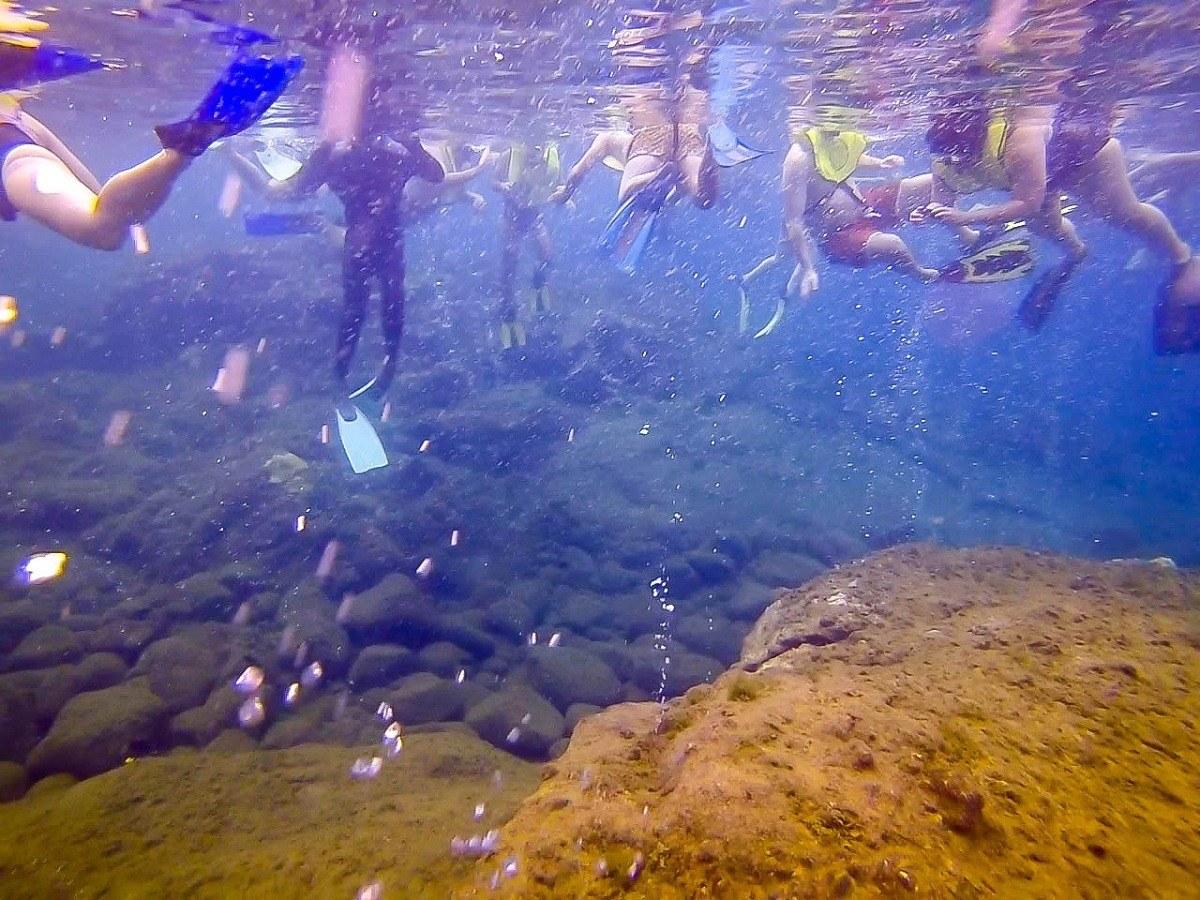 Lots of people snorkeling underwater