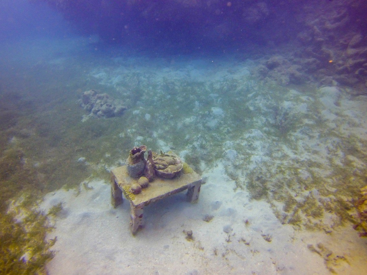 """Jason deCaires Taylor's """"The Unstill Life"""" in Molinere Bay"""
