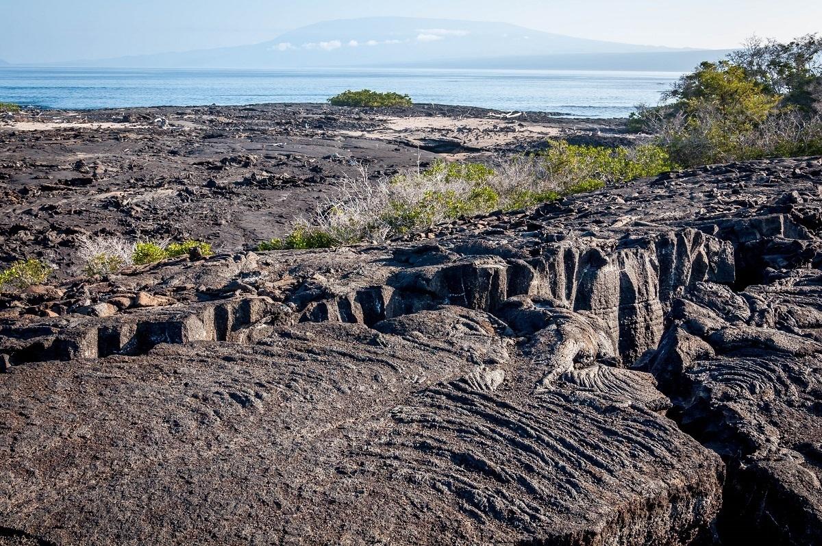 Lava flow at Punta Espinoza on Fernandina Island on the western Galapagos itinerary