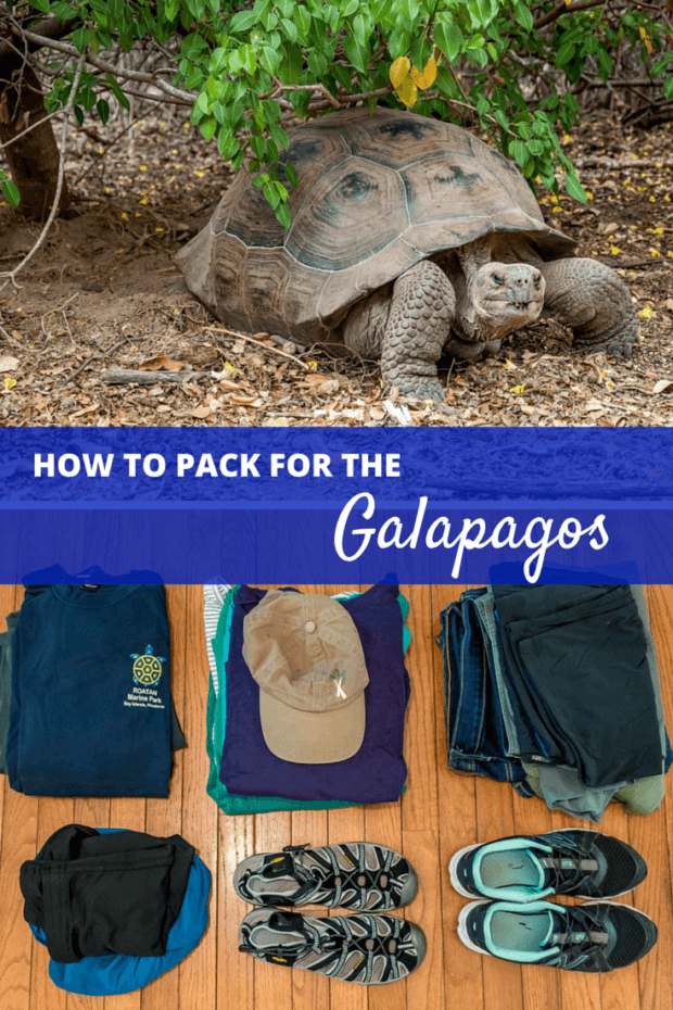 What to Pack for Ecuador and the Galapagos Islands (Plus Key Tips!)