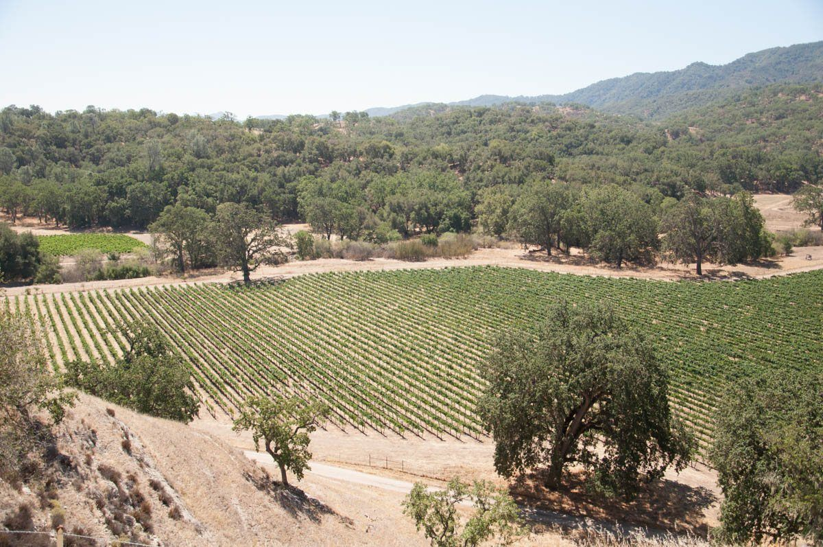 The Ancient Peaks Winery in Paso Robles, CA