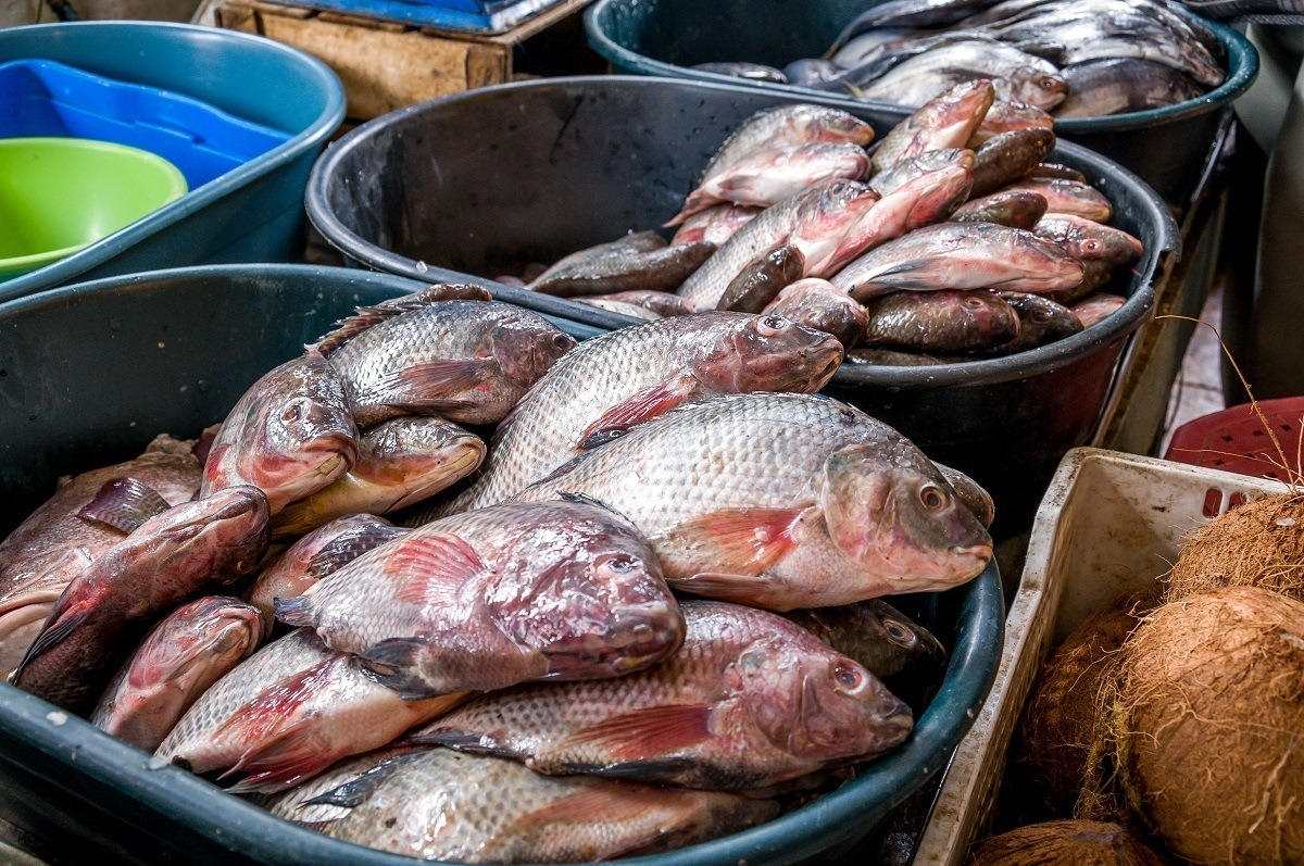 Pots of fish in the market in Otavalo