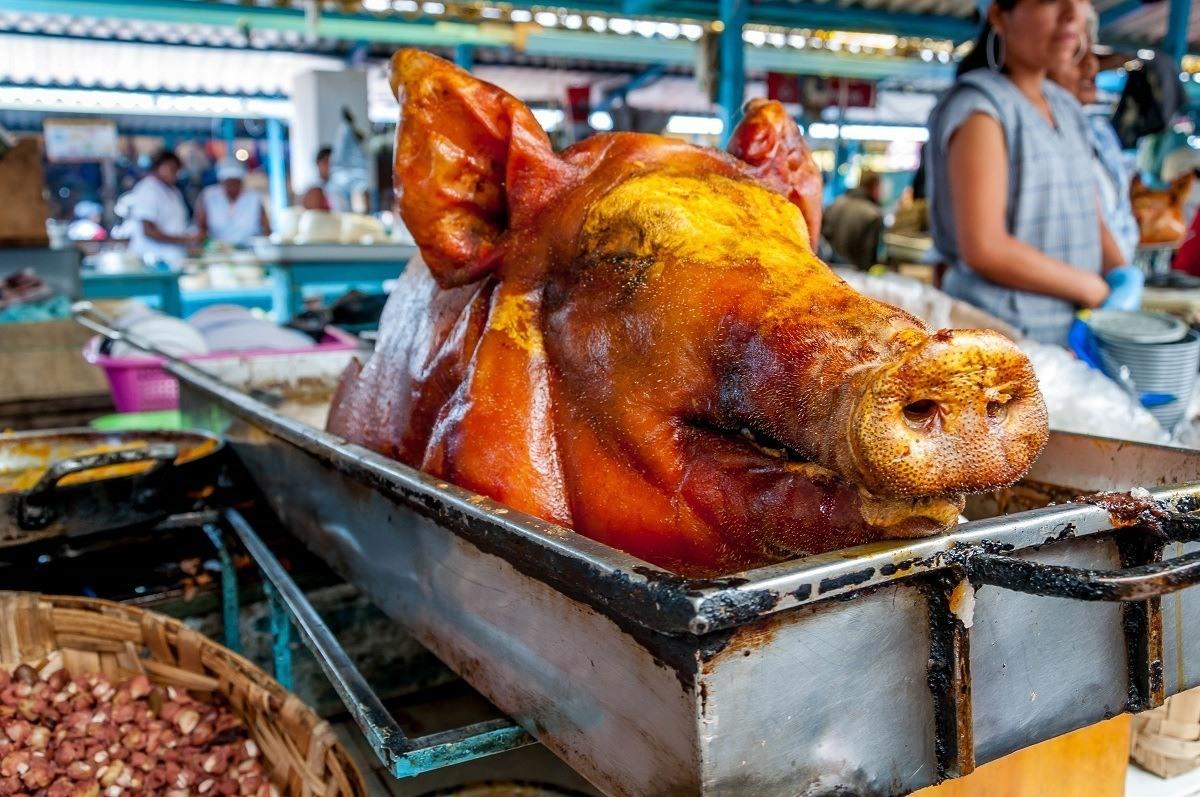 A pig head in a metal rack