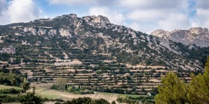 Vineyards and mountains of France's Cotes du Rhone