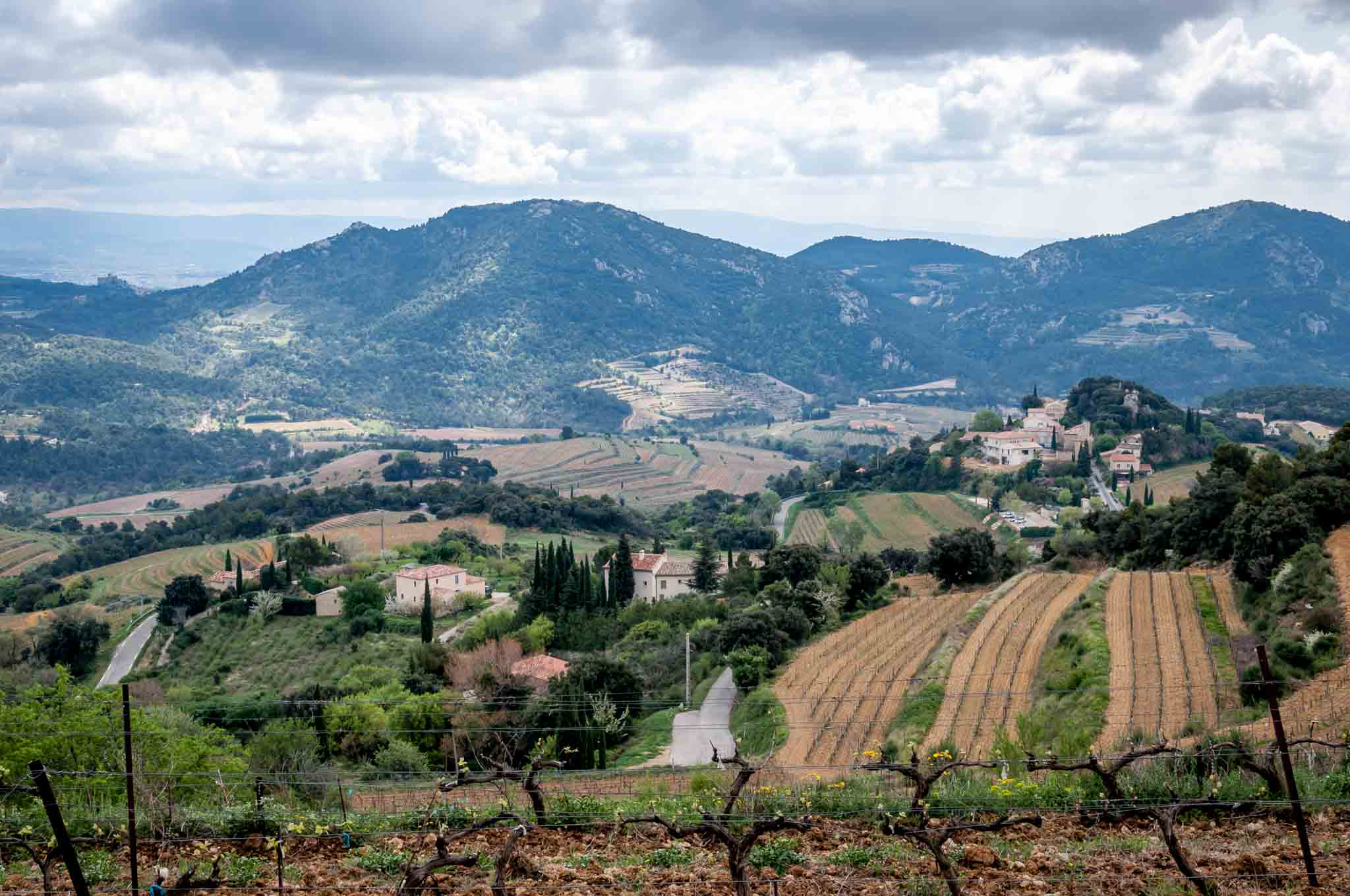 Mountains and Cotes du Rhone vineyards