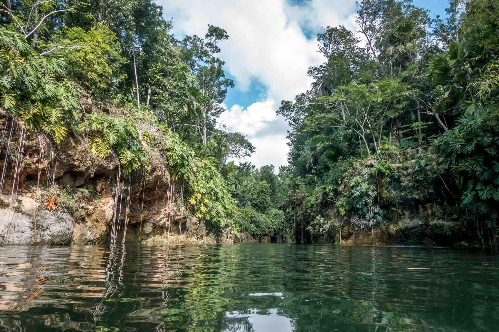 Swimming through a cenote near Playa del Carmen on the Xenotes Oasis Maya tour