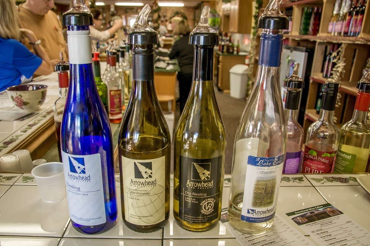 Bottles of wine at a wine tasting