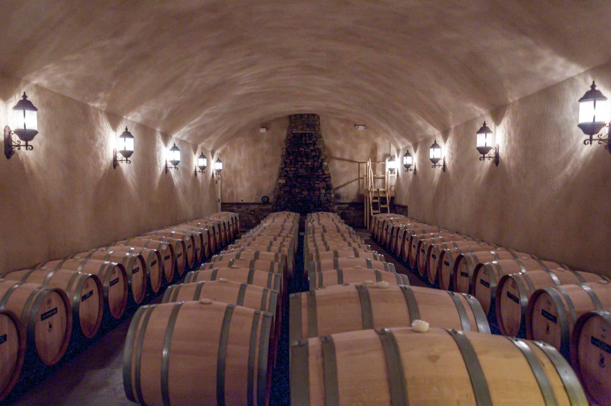 Room filled with wine barrels