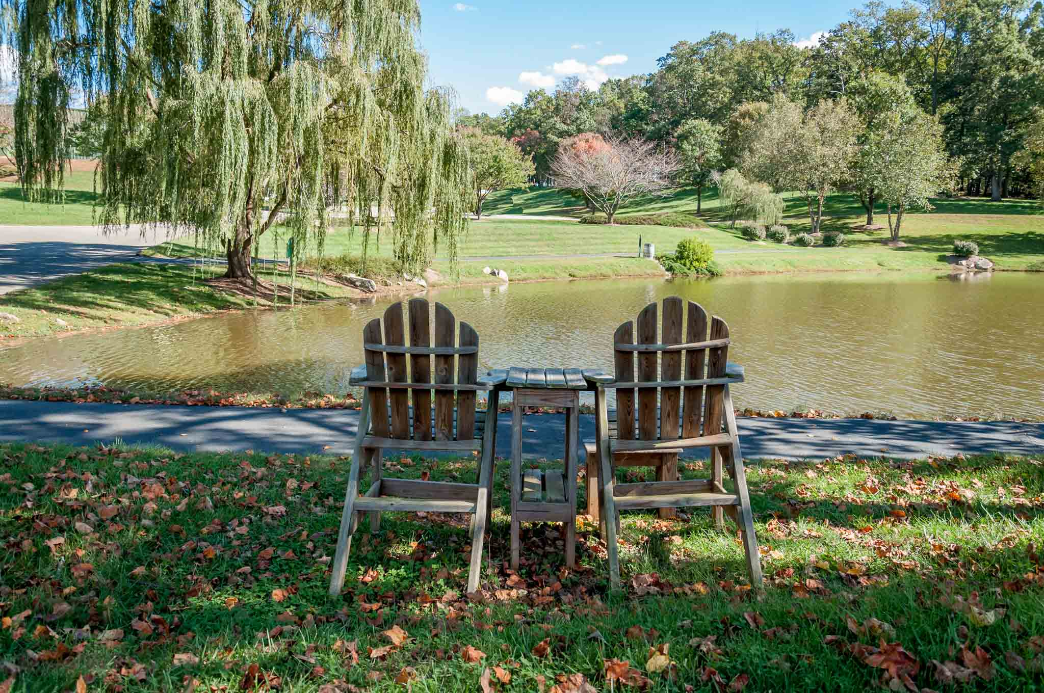Chairs beside a pond