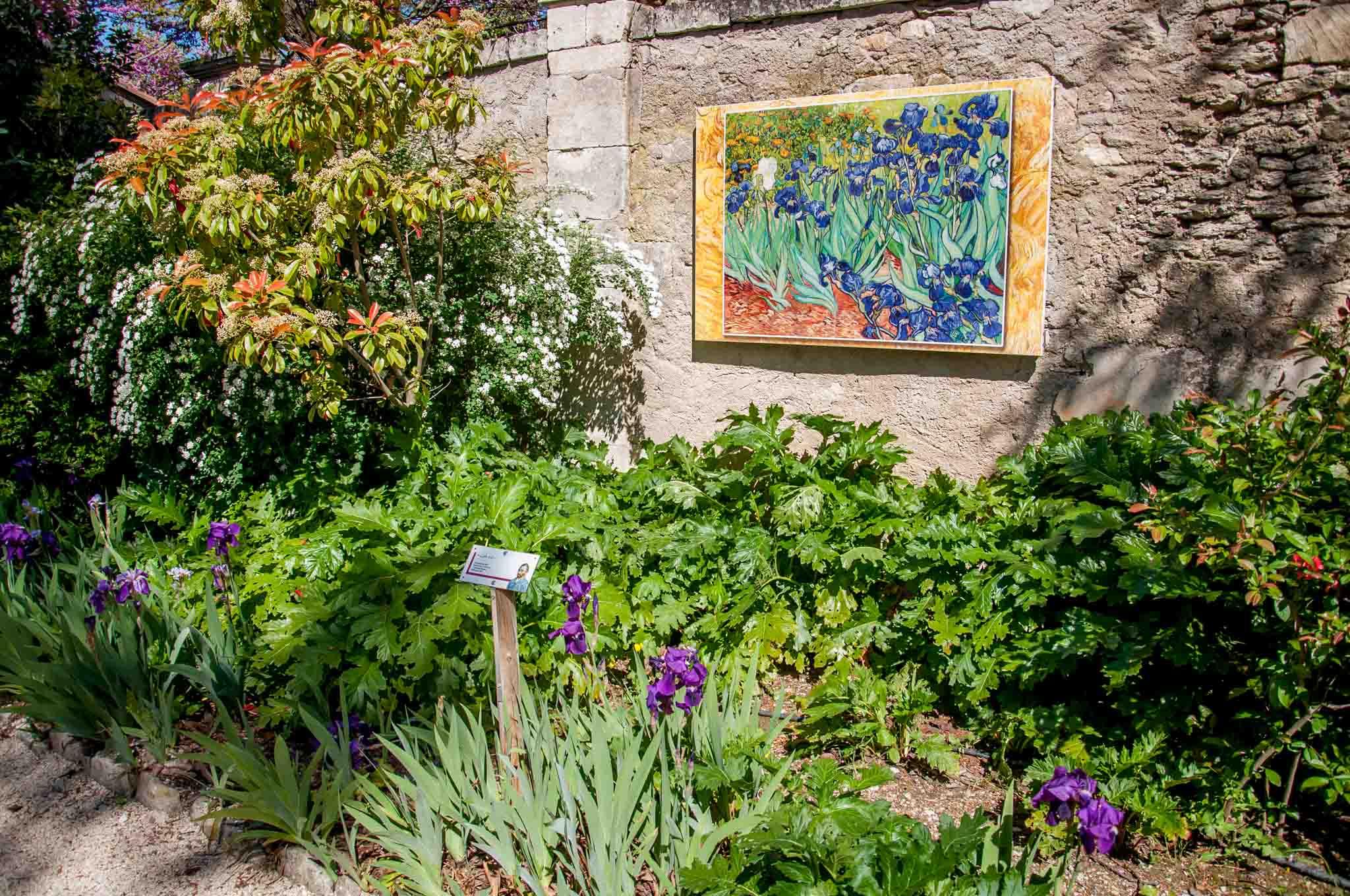 Replicas of Van Gogh's painting of flowers set among flowers