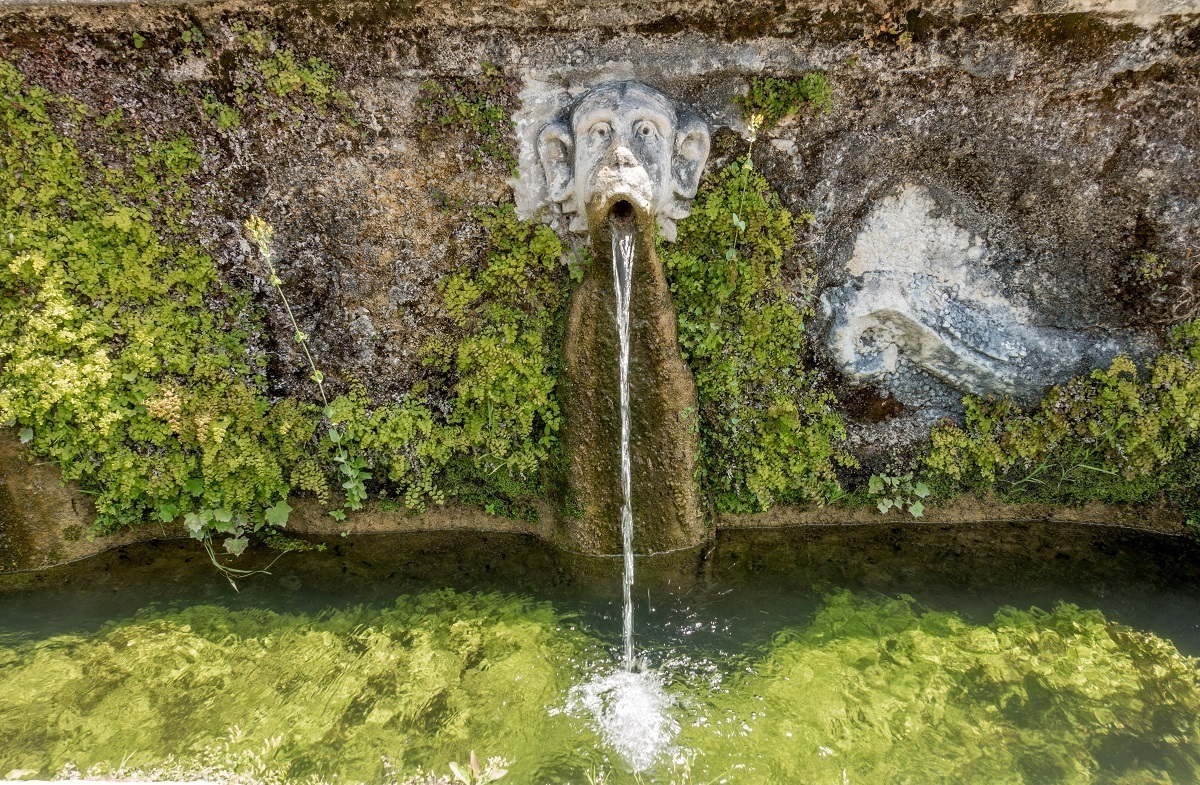 Water spouting from mouth of a monkey statue