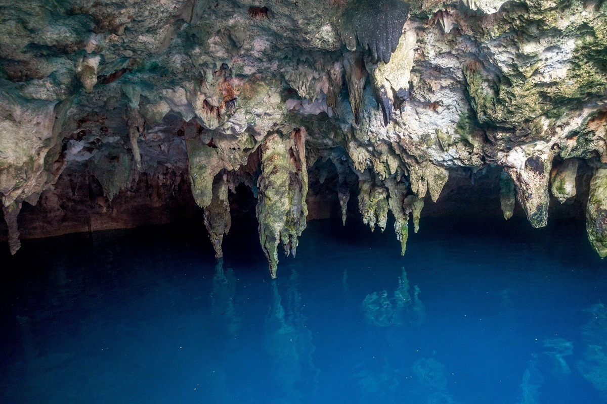 Stalactites at Cenote la Noria growing down into the water