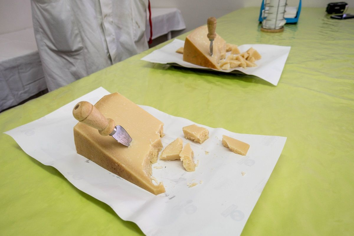 Chunks of cheese on table