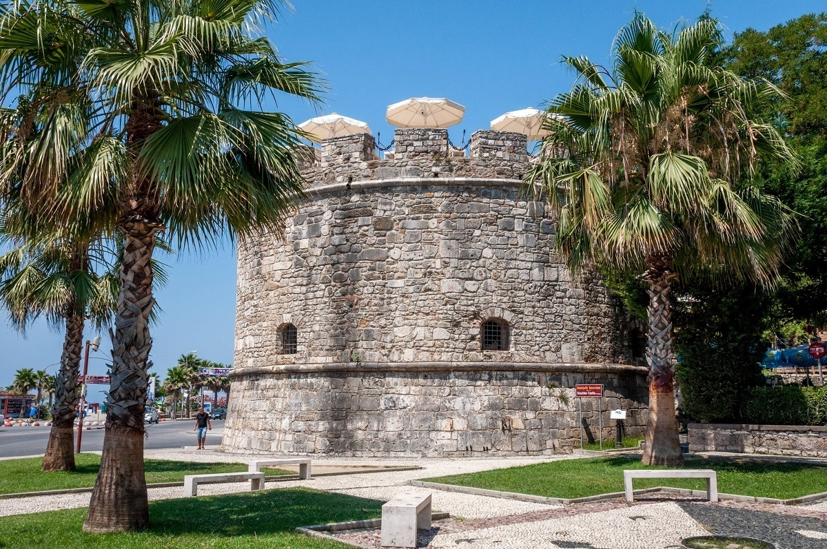 Stone tower surrounded by palm trees