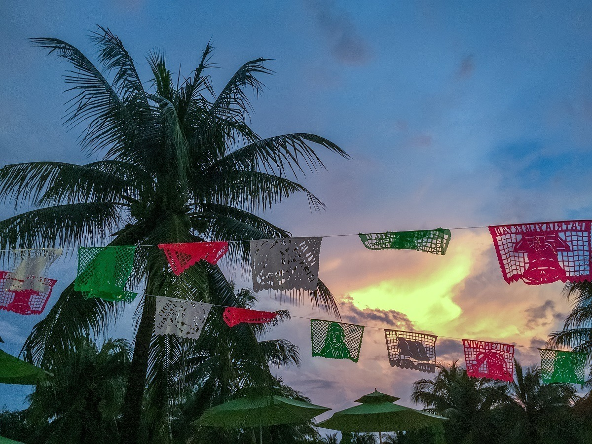 Palm tree in Mexico at sunset with fiesta flags