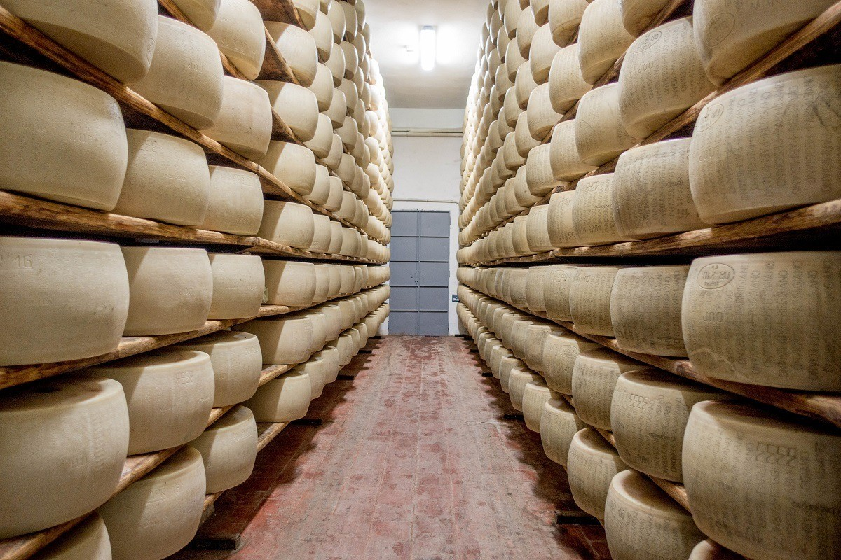 Wheels of Parmigiano-Reggiano on shelves