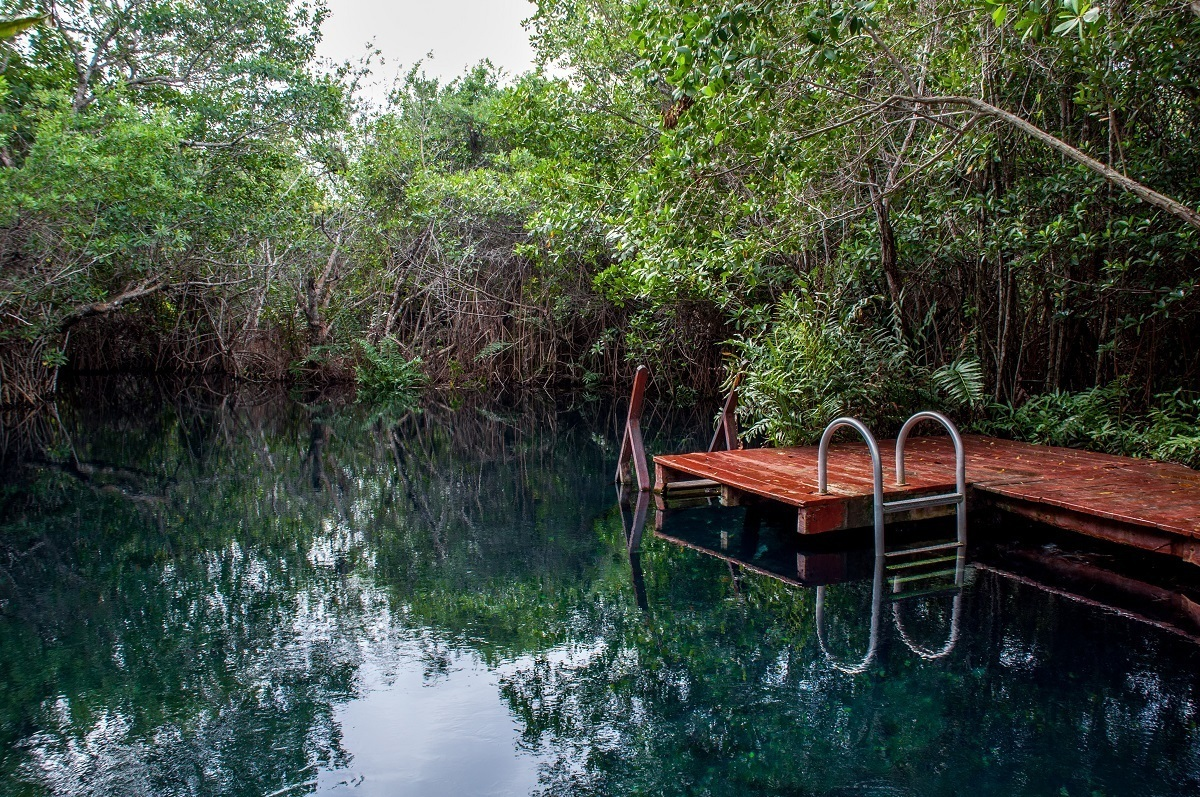 A cenote on the property of the Tres Rios Nature Park