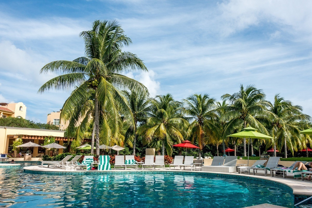 Palm trees by the Hacienda Tres Rios pool