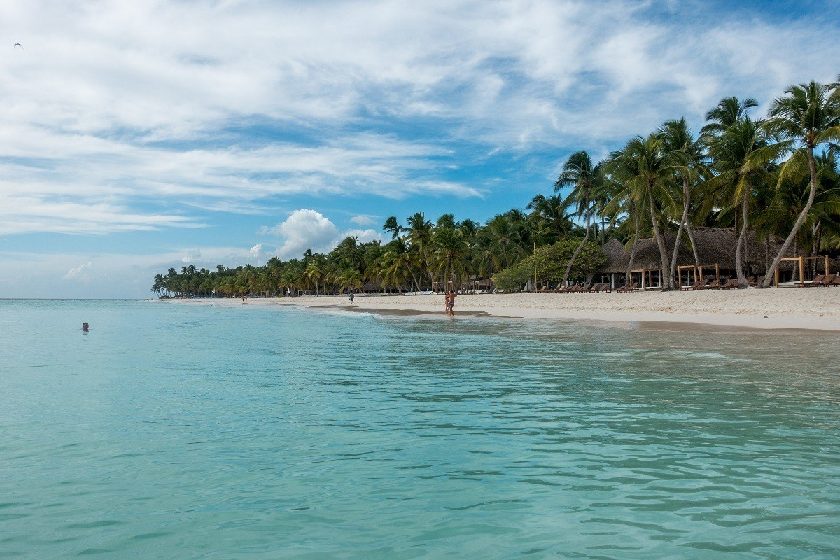 Ocean and Saona Island filled with palm trees