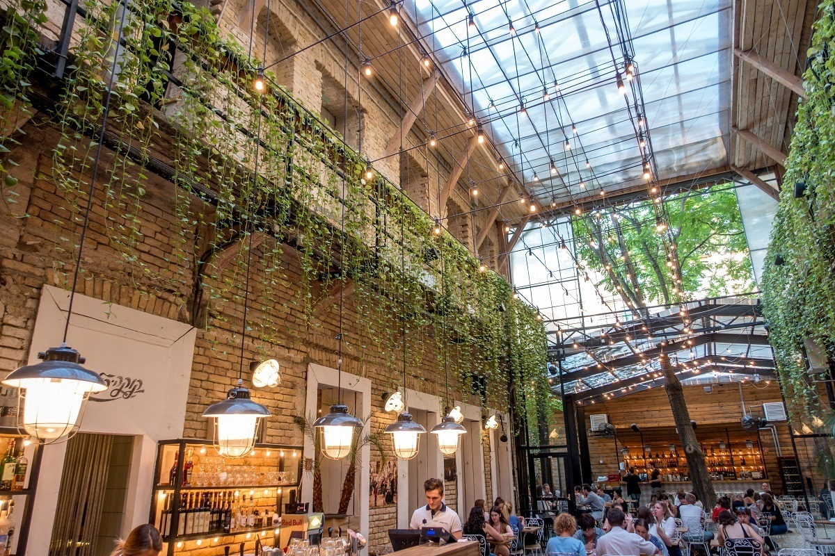 People eating in an airy courtyard with ivy and white lights
