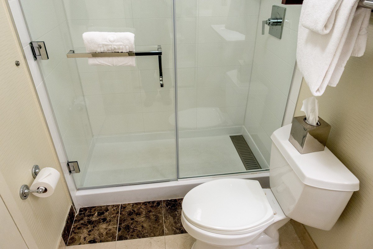 Toilet and shower in bathroom