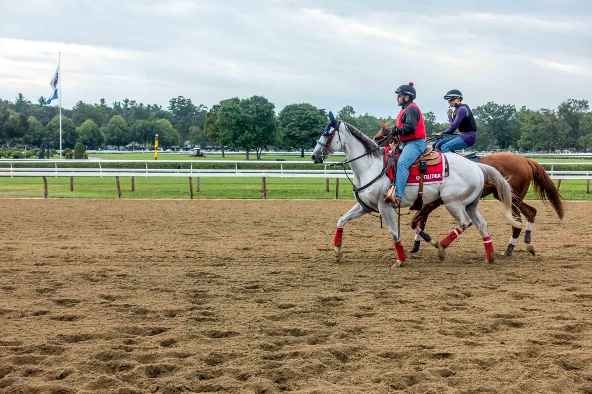 Horses on race track