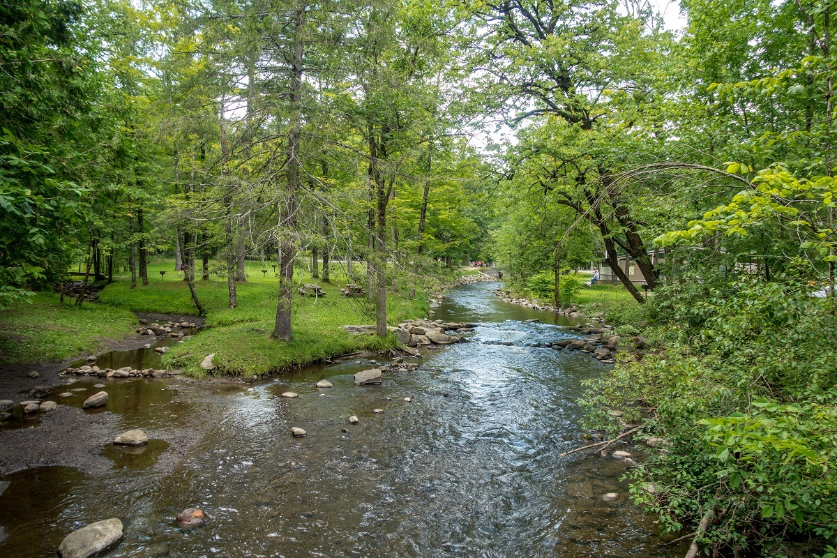 Water flowing through green landscape in Saratoga Spa State Park