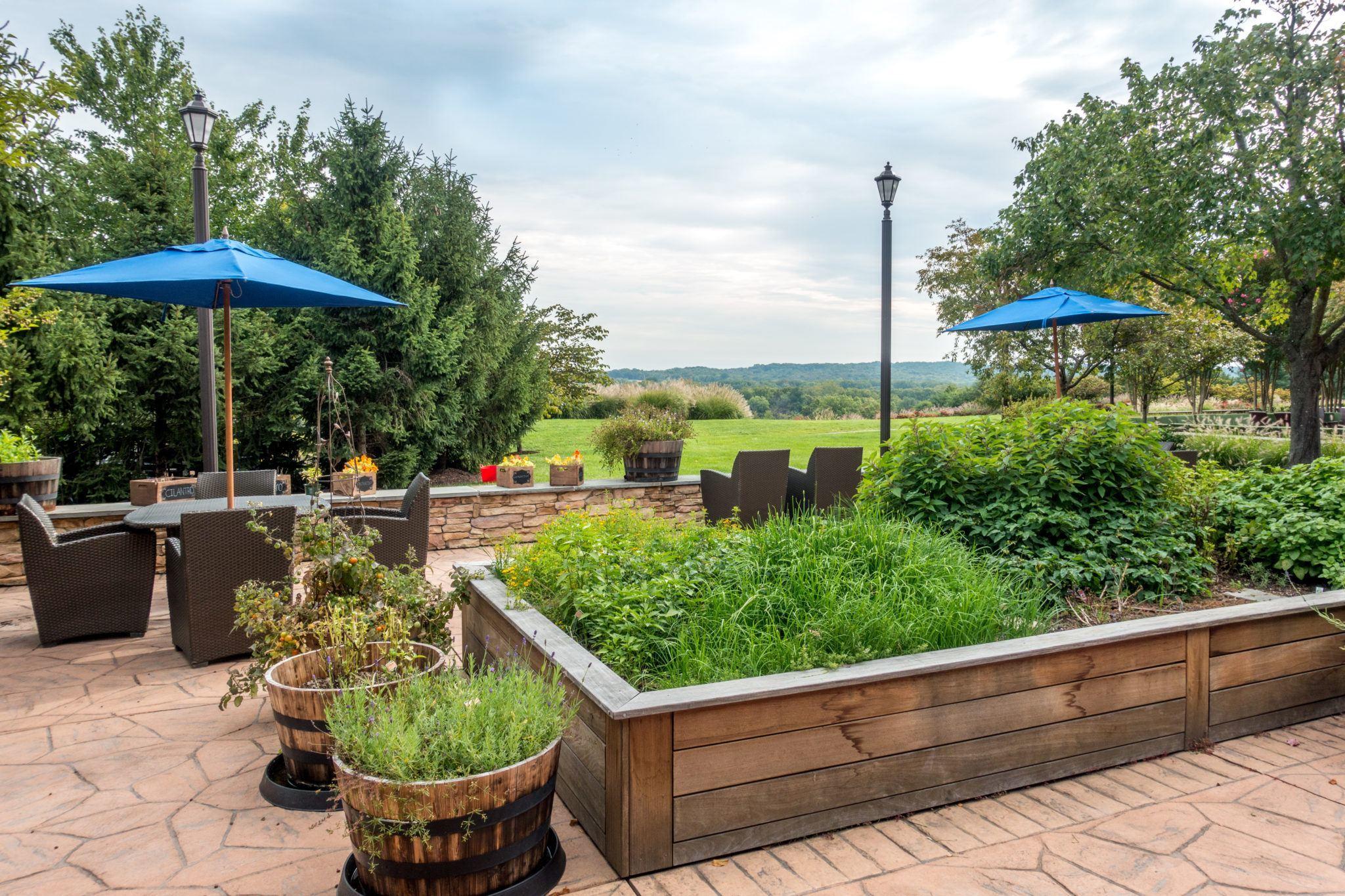 Raised garden bed at Lansdowne Resort in Virginia