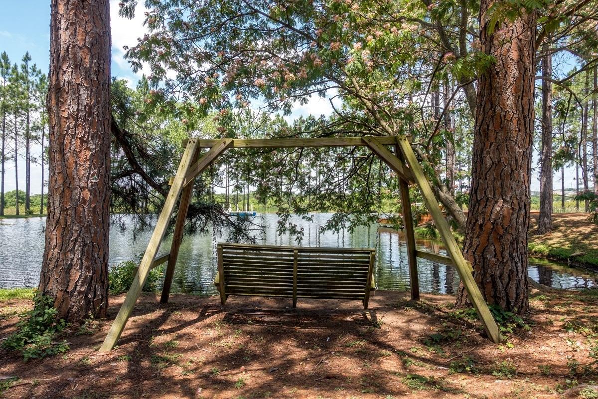 Swing under trees in Fredericksburg, Texas